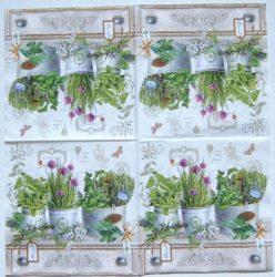 szalvéta 12a_Herbarium