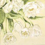 szalvéta  12C_Mona Svard fehér tulipán