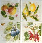 szalvéta 12D_Ribes-Botanical