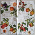 szalvéta 12D_fruit garden